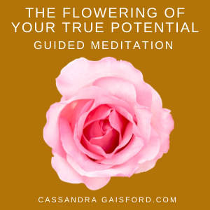 THE FLOWERING OF YOUR TRUE POTENTIAL GUIDED MEDITATION